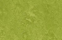 Forbo Marmoleum  Fresco, 3247 green