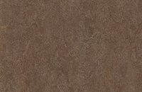 Forbo Marmoleum  Fresco 3861 Arabian pearl, 3874 walnut