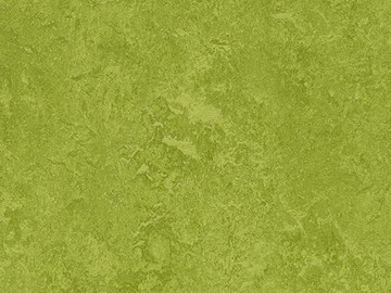 Forbo Marmoleum  Fresco 3247 green