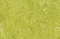Forbo Marmoleum  Real 3881 green wellness, 3224 chartreuse