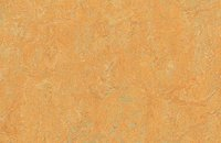 Forbo Marmoleum  Real 3048 graphite, 3847 golden saffron