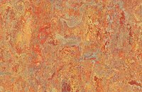 Forbo Marmoleum Vivace 3420 surprising storm, 3403 asian tiger